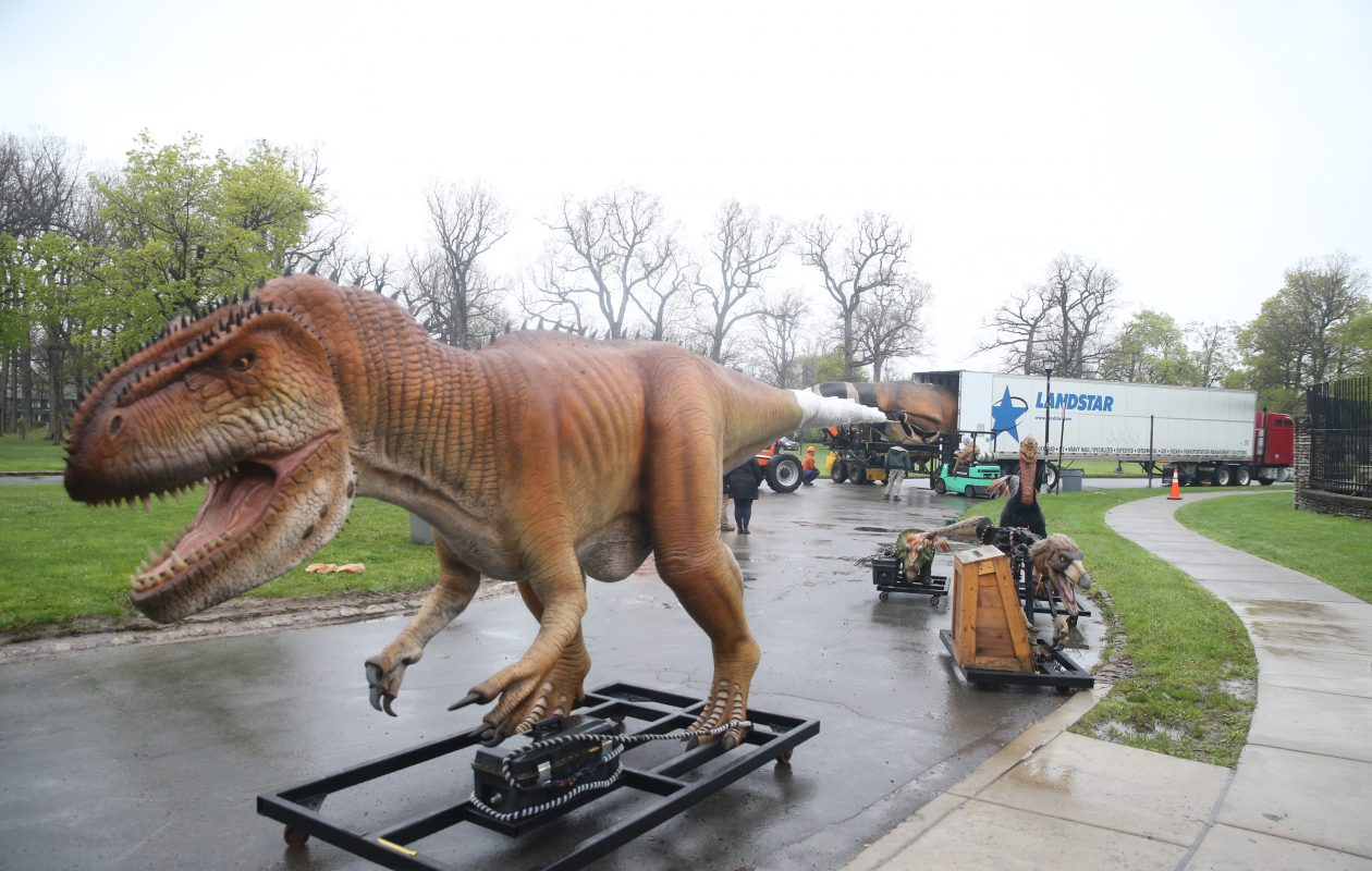 Dinosaurs arrive and are unpacked at Buffalo Zoo for the OMG Dinosaurs!, in Buffalo, on Monday, May 13, 2019. The OMG Dinosaur exhibit opens Saturday May 18, 2019 and is comprised of eleven life-sized animatronic dinosaurs.   (John Hickey/Buffalo News)