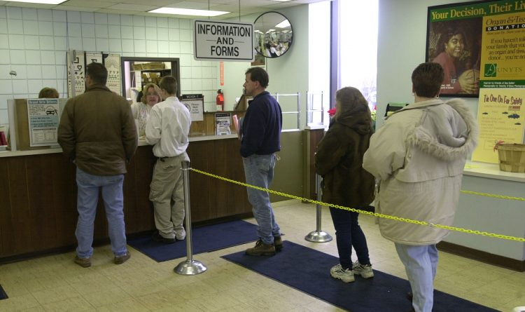 How would driver's licenses work for those in the country