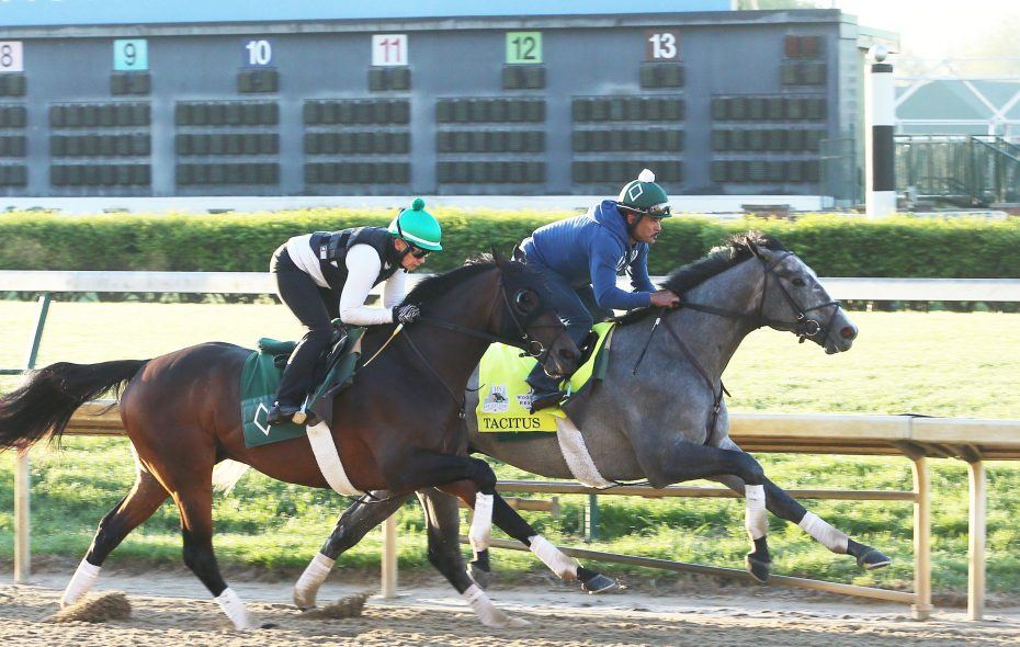 Tacitus works over the Churchill Downs surface in preparation for Kentucky Derby 145. Photo Credit: Churchill Downs