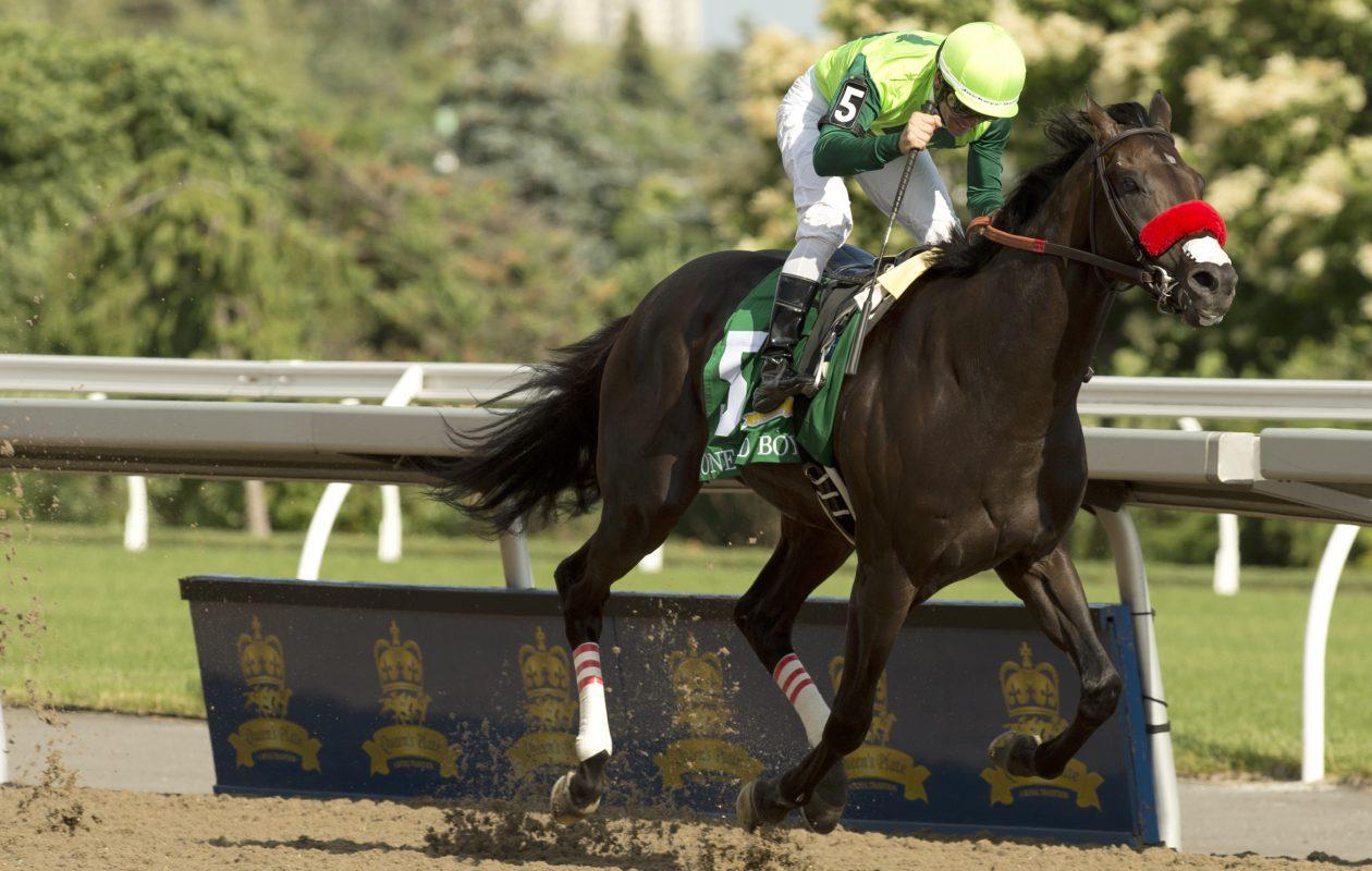 Toronto Ont.June29, 2019.Woodbine Racetrack.Queen's Plate One Bad Boy Jockey Flavien Prat. Woodbine/ michael burns photo