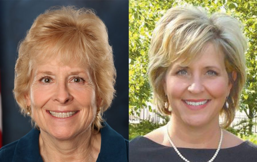 Diane Terranova, left, won the Conservative line and was leading in the Democratic primary in Tuesday's town clerk races, but she lost big to Anne Desiderio in the GOP primary. (Contributed photos)
