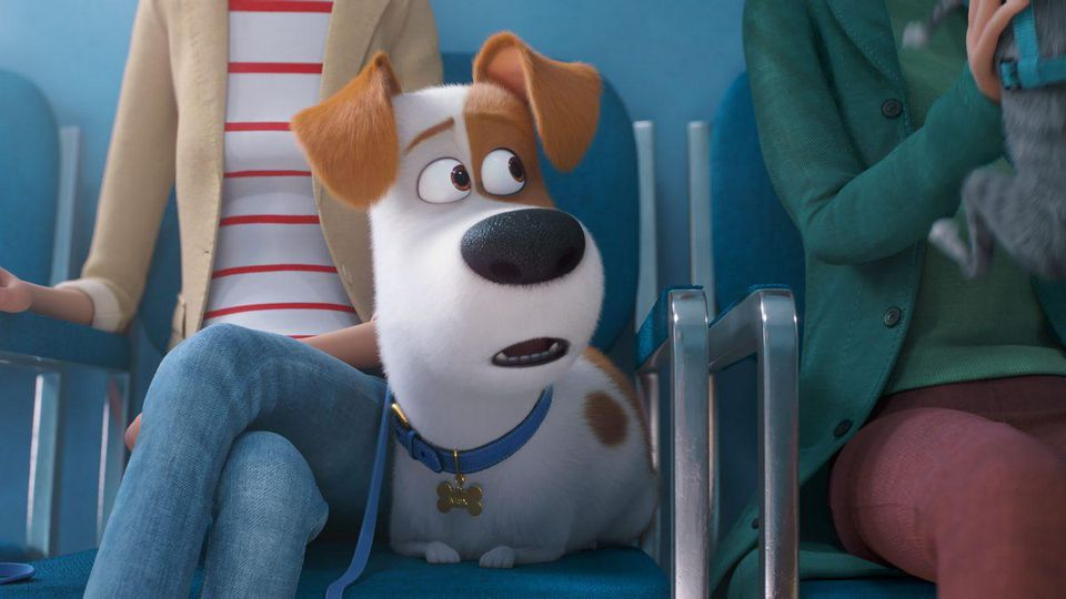 Despite the return of familiar friends like Max, there are some scary moments for the kids in 'The Secret Life of Pets 2.'