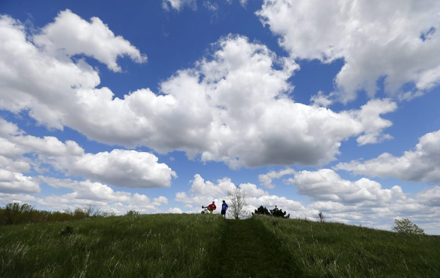 Tifft Nature Preserve has five miles of trail to enjoy. (Mark Mulville/News file photo)