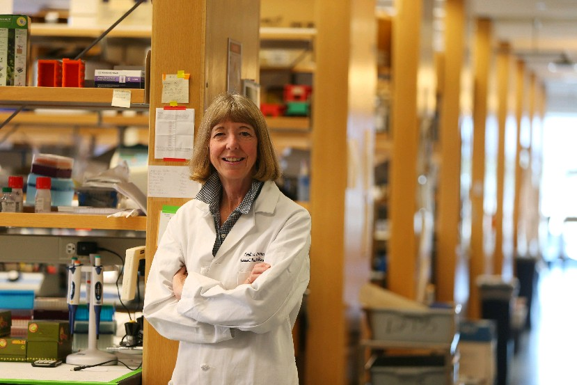 Dr. Candace Johnson, shown in the lab area of the Center for Personalized Medicine at Roswell Park Comprehensive Cancer Center, has led the hospital to national prominence. (Mark Mulville/News file photo)