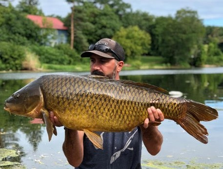 Paul Natiella of South Lima caught this 36-pound, 12-ounce carp during the Greater Niagara Fish Odyssey to win the Carp Division and eventually the Grand Prize. He was fishing near Point Breeze on the Oak Orchard River. (Photo courtesy of Paul Natiella)