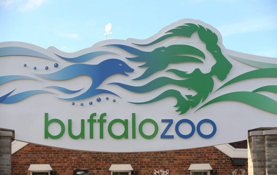 Labor Day admission price will be $5 at the Buffalo Zoo