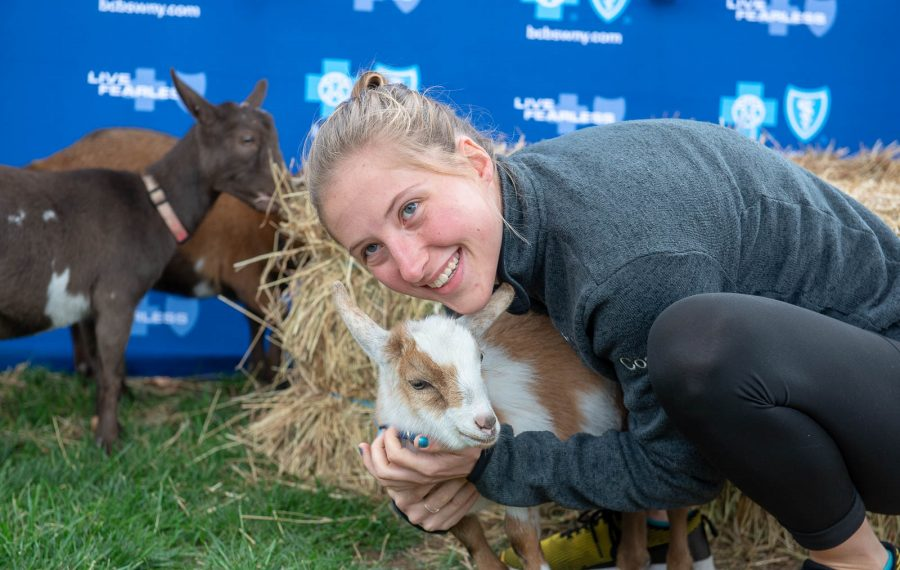 Goat yoga took the country by storm after an Oregon farm started the trend in 2016. Will cow cuddling,  popular in the Netherlands, also take off? (Matt Weinberg/Special To The News)