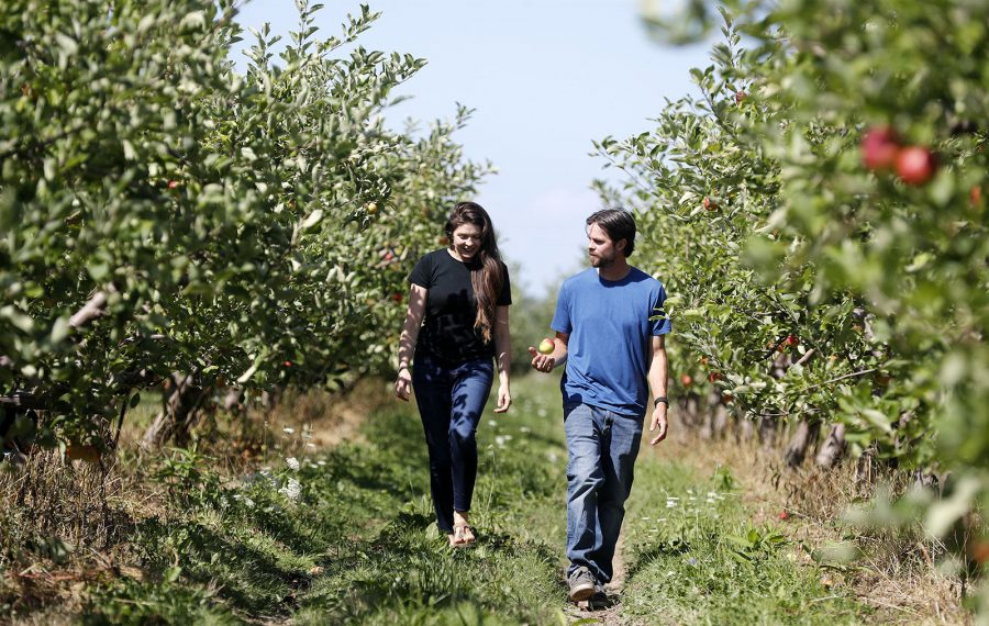On Dan Tower's farm in Youngstown, a change in generations