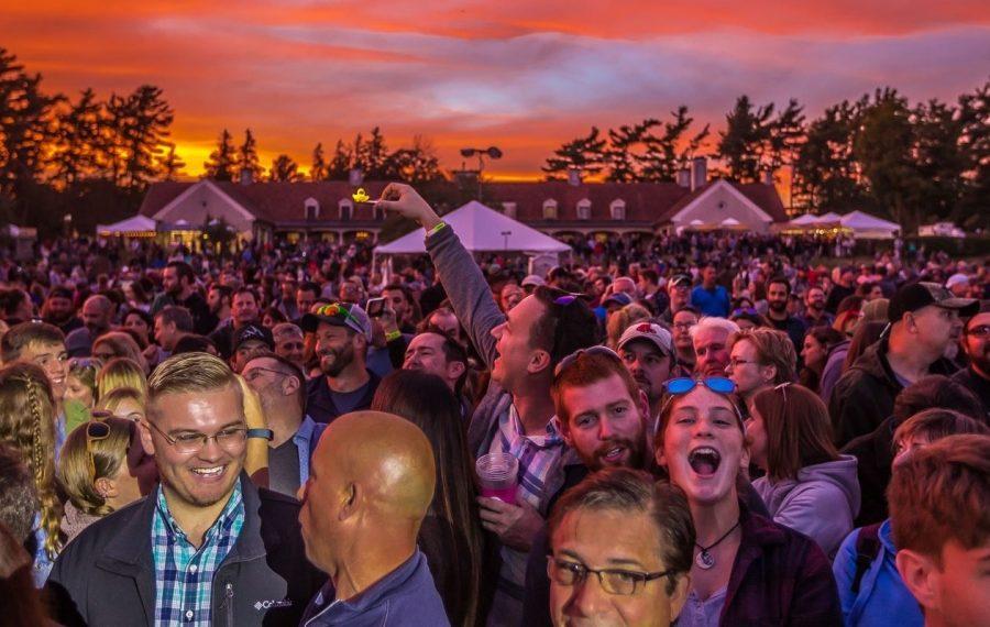 Fans at the 2018 Borderland festival. (The Buffalo News)