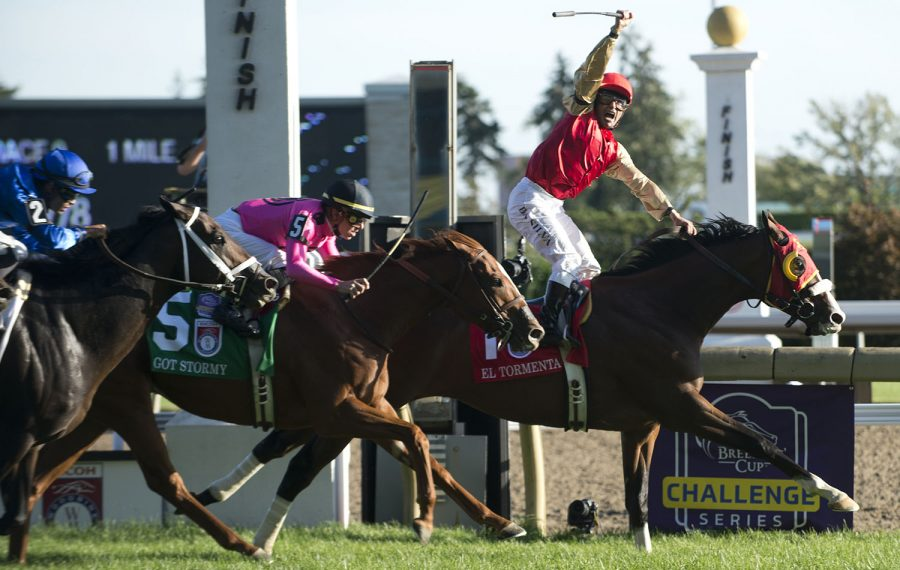 Toronto Ont.September 14, 2019. Woodbine Racetrack.Jockey Eurico Da Silva guides El Tormenta to victory in the $1,000,000 dollar Ricoh Woodbine Mile for owners Sam Son Farm and trainer Gail Cox. michael burns photo