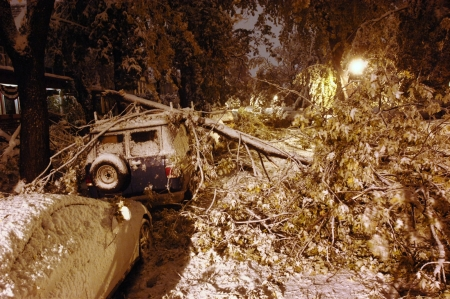 The snowstorm that became known as the October Surprise struck the night of Oct. 12, 2006, and affected thousands of Western New Yorkers. The heavy snow brought down hundreds of thousands of trees, blocking roads and leaving area homes and businesses without heat and electricity for days. Efforts are still underway to