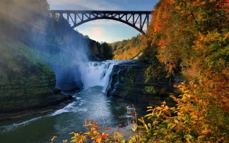 Western New York's landscapes come alive in the fall when the leaves burst into vibrant reds, oranges and yellows. News photographers traveled around the region to capture beautiful fall colors.