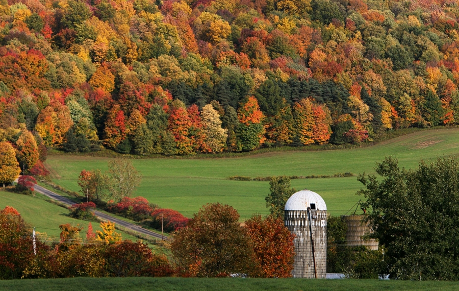 Where to see Western New York's most vibrant fall colors