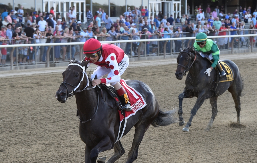 Midnight Bisou can win her eighth straight race of the year with a win in the Breeders' Cup Distaff on Saturday. Photo Credit: Chelsea Durand/NYRA