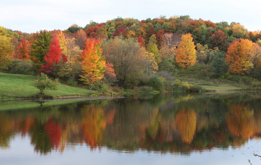 Warmer temperatures could affect fall foliage. (Sharon Cantillon/News file photo)