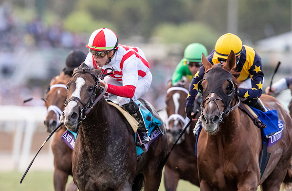 Bricks and Mortar, ridden by Irad Ortiz Jr., wins the Longines Breeders Cup Turf at Santa Anita Park on Saturday. (Photo courtesy of Alex Evers/Eclipse Sportswire/Breeders Cup/CSM)