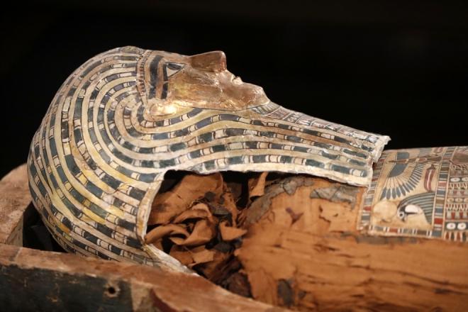 Buffalo Museum of Science-Golden Mummies of Egypt Exhibit-2020