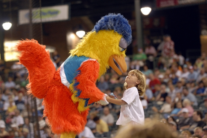 famous chicken-dave schofield photography-minor league baseball-photos-pictures-news-2020