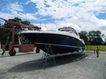 40 ft. Sea Ray Boats 390 Sundancer Cruiser Boat Rental Washington DC Image 5