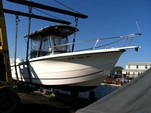 25 ft. Sea Boss by Sea Pro 235WA w/225HP Center Console Boat Rental New York Image 1