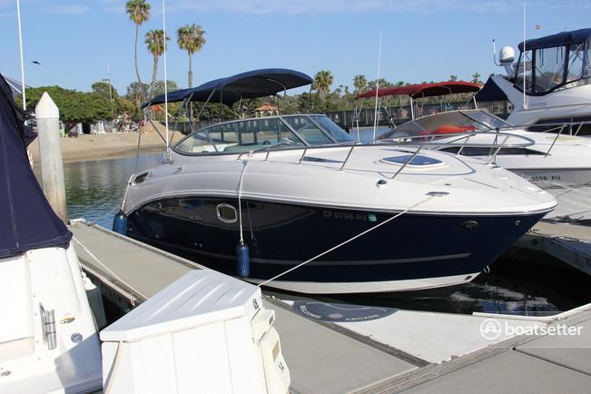 Rent A 2012 27 Ft 2012 Sea Ray Boats 260 Sundancer In Newport Beach Ca On Boatsetter