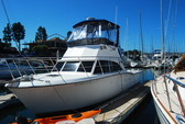 37 ft. Tiara Yachts 3600 Continental Offshore Sport Fishing Boat Rental San Diego Image 4