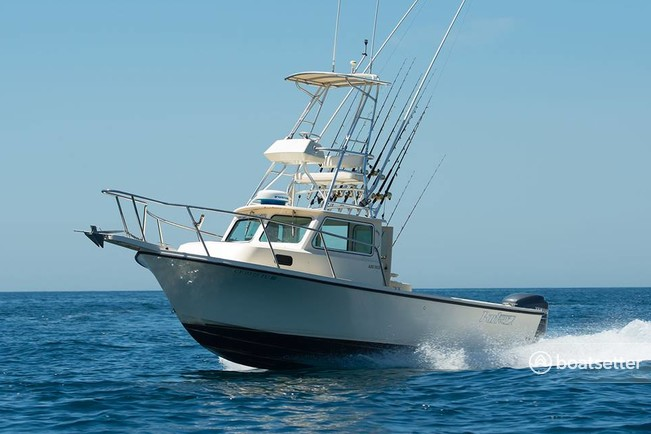 Rent a parker marine 2320 sl sport cabin in dana point ca for Dana point fishing