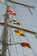 43 ft. Albin Marine Inc. 43' Sundeck Trawler Trawler Boat Rental Boston Image 12