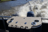 22 ft. Avalon Pontoons 22' LSZ Fish Pontoon Boat Rental N Texas Gulf Coast Image 10