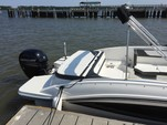 24 ft. Sea Ray Boats 21 SPX w/150 EFI 4-S  Bow Rider Boat Rental Charleston Image 6