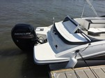 24 ft. Sea Ray Boats 21 SPX w/150 EFI 4-S  Bow Rider Boat Rental Charleston Image 7