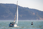 36 ft. Beneteau Oceanis 35 Cruiser Sloop Boat Rental San Francisco Image 14