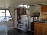45 ft. Californian Yachts Aft cabin motor yacht Motor Yacht Boat Rental Los Angeles Image 43