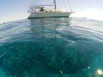 38 ft. Island Packet Yachts Island Packet 370 Cruiser Boat Rental Miami Image 35