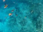 38 ft. Island Packet Yachts Island Packet 370 Cruiser Boat Rental Miami Image 39