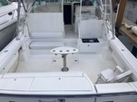 43 ft. Tiara Yachts 4300 Open Offshore Sport Fishing Boat Rental West Palm Beach  Image 9