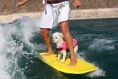 24 ft. MasterCraft Boats X45 Ski And Wakeboard Boat Rental Las Vegas-Lake Havasu Image 12