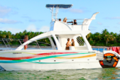 33 ft. Luxury Catamaran N/A Catamaran Boat Rental Punta Cana Image 2