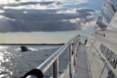 78 ft. Leopard 23M Sport Motor Yacht Boat Rental Miami Image 15