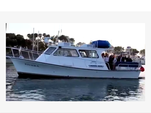 36 ft. Newton  Boat Rental Rest of Southwest Image 1