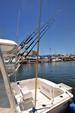 25 ft. Luhrs 250 Open Offshore Sport Fishing Boat Rental Nuevo Vallarta Image 2