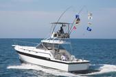 36 ft. Alura 36 Offshore Sport Fishing Boat Rental Puerto Vallarta Image 5