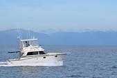 38 ft. Bertram Sportfish Offshore Sport Fishing Boat Rental Nuevo Vallarta Image 9