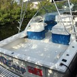 38 ft. Wellcraft 38 Scarab AVS Fish And Ski Boat Rental Cayman Image 3