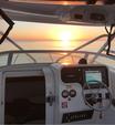 23 ft. Edgewater Powerboats 228 CC w/F250 Yamaha Dual Console Boat Rental San Diego Image 3