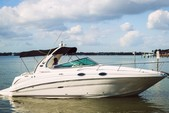 31 ft. Sea Ray Boats 280 Sundancer Cruiser Boat Rental Tampa Image 2