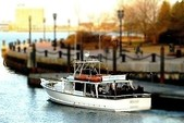 50 ft. 50' Fun Boat Motor Yacht Boat Rental Boston Image 13