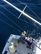 38 ft. Cabo Yachts 35 Express Offshore Sport Fishing Boat Rental The Keys Image 22