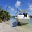 24 ft. Sailfish 234 Wac Cuddy Cabin Boat Rental Sarasota Image 6