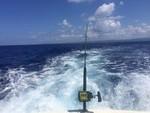 26 ft. JC and Neptoon Pontoon 266 TriToon Pontoon Boat Rental Austin Image 1